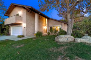 911 Passiflora Avenue, Encinitas, CA 92024 (#170010065) :: The Marelly Group | Realty One Group