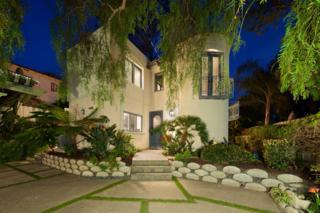 233 10th Street, Del Mar, CA 92014 (#170013510) :: Gary Kent Team