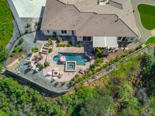 2971 Mesa Grove Road, Fallbrook, CA 92028 (#170014231) :: The Marelly Group | Realty One Group