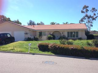 3766 Wild Oats Lane, Bonita, CA 91902 (#170014314) :: The Marelly Group | Realty One Group