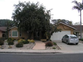 1055 Monterey Vista Way, Encinitas, CA 92024 (#170014447) :: The Marelly Group | Realty One Group