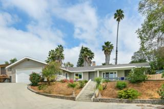 1247 Alessandro Lane, Vista, CA 92084 (#170014454) :: The Marelly Group | Realty One Group