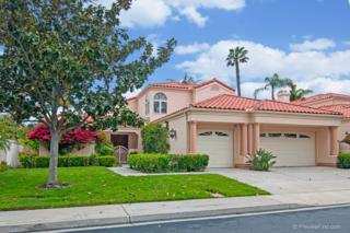 14326 Calle Andalucia, San Diego, CA 92130 (#170014611) :: The Marelly Group | Realty One Group