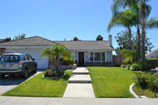 727 Point Arguello, Oceanside, CA 92054 (#170014797) :: The Marelly Group | Realty One Group