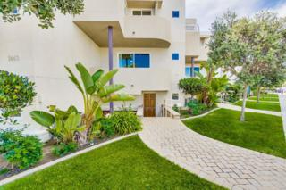1437 Locust, San Diego, CA 92106 (#170014808) :: Pickford Realty LTD, DBA Coldwell Banker Residential Brokerage