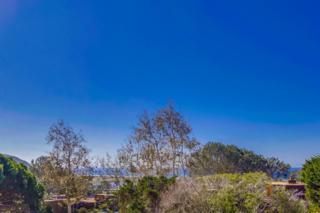 13028 Caminito Mar Villa, Del Mar, CA 92014 (#170014845) :: Gary Kent Team