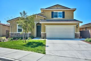 29425 Wrigleys Cir, Lake Elsinore, CA 92530 (#170014928) :: Gary Kent Team
