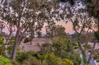 5624 Caminito Herminia, La Jolla, CA 92037 (#170015697) :: Pickford Realty LTD, DBA Coldwell Banker Residential Brokerage