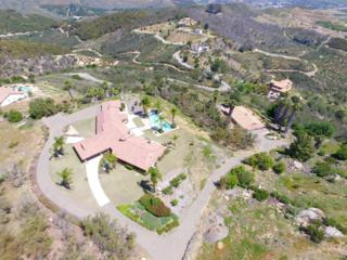36485 Carney Road, Valley Center, CA 92082 (#170016832) :: Pacific Sotheby's International Realty