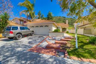 11153 Avenida De Los Lobos, San Diego, CA 92127 (#170017090) :: Whissel Realty