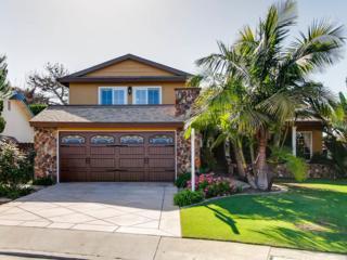 14256 Pinewood Drive, Del Mar, CA 92014 (#170019186) :: California Real Estate Direct