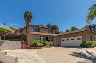 7241 Horner Street, San Diego, CA 92120 (#170019899) :: Whissel Realty