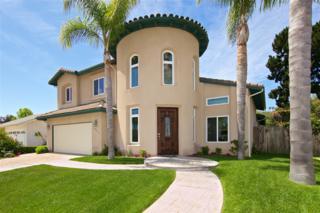 14212 Minorca Cove, Del Mar, CA 92014 (#170020068) :: California Real Estate Direct