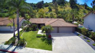 1565 Wyatt Place, El Cajon, CA 92020 (#170020120) :: Neuman & Neuman Real Estate Inc.