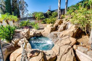 9168 Grossmont Boulevard, La Mesa, CA 91941 (#170020316) :: Neuman & Neuman Real Estate Inc.