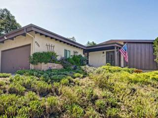 9335 Horton Drive, La Mesa, CA 91942 (#170020372) :: Whissel Realty