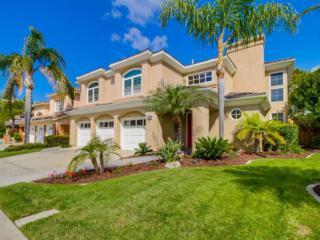 4722 Shadwell, San Diego, CA 92130 (#170020569) :: Neuman & Neuman Real Estate Inc.