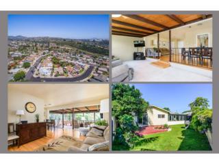 6259 Winona Avenue, San Diego, CA 92120 (#170020603) :: Whissel Realty