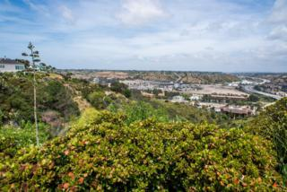 5234 35Th, San Diego, CA 92116 (#170020837) :: Whissel Realty