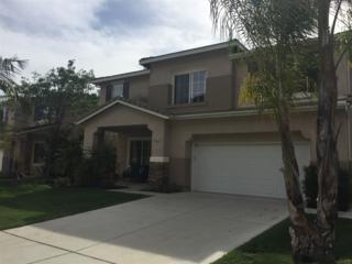 3661 Lake Circle, Fallbrook, CA 92028 (#170020855) :: Allison James Estates and Homes