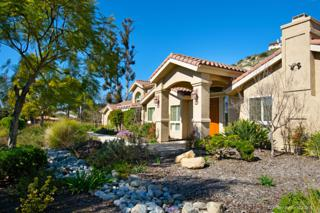 7102 Via Mariposa Norte, Bonsall, CA 92003 (#170025348) :: Pacific Sotheby's International Realty