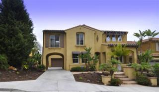 2635 E Fallsview Rd, San Marcos, CA 92078 (#170025794) :: Pacific Sotheby's International Realty