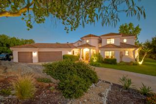 14785 Cool Valley Ranch Rd, Valley Center, CA 92082 (#170026697) :: Pacific Sotheby's International Realty