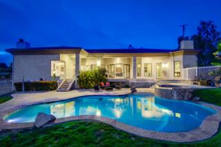 3283 Sage Rd, Fallbrook, CA 92028 (#170027438) :: Pacific Sotheby's International Realty