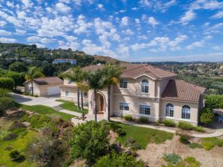 32 Rolling Wood Ln, Fallbrook, CA 92028 (#170027442) :: Pacific Sotheby's International Realty