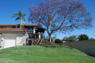 6928 Peach Tree Rd, Carlsbad, CA 92011 (#170027515) :: Pacific Sotheby's International Realty