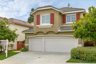 2423 Badger Lane, Carlsbad, CA 92010 (#170027557) :: Pacific Sotheby's International Realty