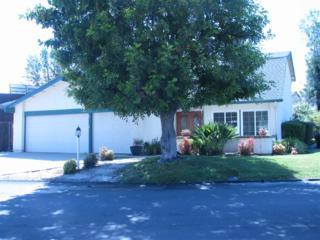 463 Via Arboles, San Marcos, CA 92069 (#170027575) :: Pacific Sotheby's International Realty