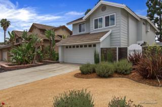 3937 Carmel Brooks Way, San Diego, CA 92130 (#170027639) :: Group 46:10 Southern California