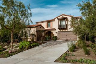 445 Ernest Ct, Oceanside, CA 92056 (#170027644) :: Pacific Sotheby's International Realty