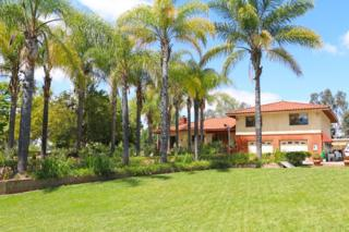 3209 Yucca Ter, Fallbrook, CA 92028 (#170027676) :: Pacific Sotheby's International Realty