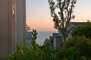 248 Dolphin Cove, Del Mar, CA 92014 (#170027685) :: Pacific Sotheby's International Realty