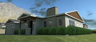 815 Renfro Way #49, El Cajon, CA 92019 (#170013840) :: Neuman & Neuman Real Estate Inc.