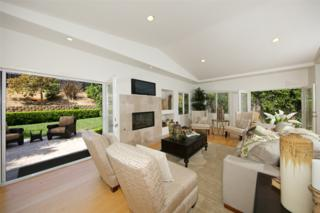 14212 Minorca Cove, Del Mar, CA 92014 (#170020068) :: Neuman & Neuman Real Estate Inc.