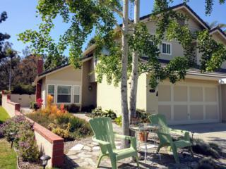 12334 Sardina Cv, San Diego, CA 92130 (#170020474) :: Neuman & Neuman Real Estate Inc.