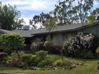 1837 Avocado Road, Oceanside, CA 92054 (#170013345) :: The Marelly Group | Realty One Group