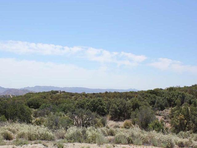 66 acres Highway 94 # #47, Boulevard, CA 91905 (#160032030) :: Impact Real Estate