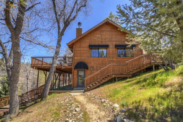 1127 Crags Ln, Fawnskin, CA 92333 (#170025009) :: PacifiCal Realty Group