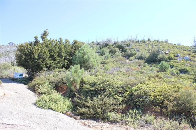 2.5 Acres N Peak Way #10, Julian, CA 92036 (#170025101) :: The Yarbrough Group