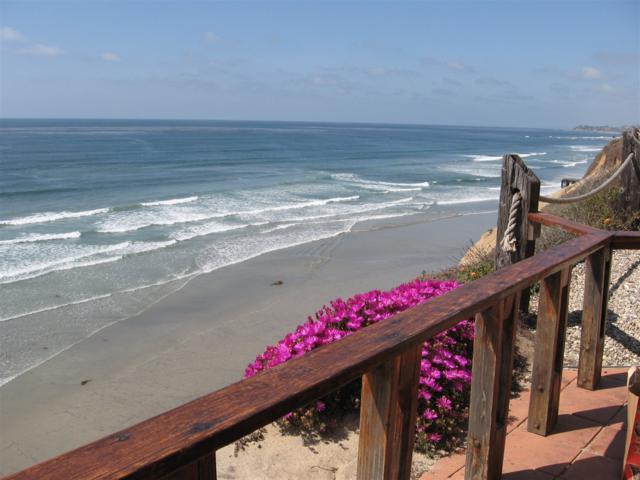 441 S Sierra #106, Solana Beach, CA 92075 (#170029003) :: The Marelly Group | Realty One Group
