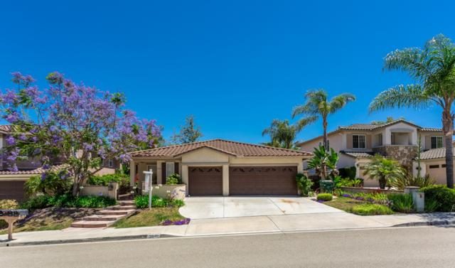 2849 Rancho Rio Chico, Carlsbad, CA 92009 (#170031367) :: The Marelly Group | Realty One Group
