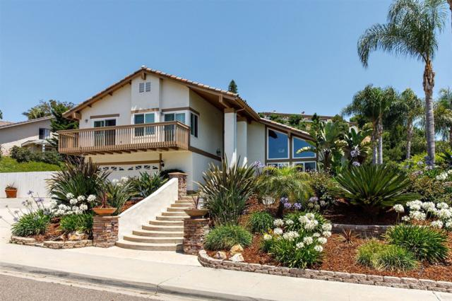 2909 Cacatua St., Carlsbad, CA 92009 (#170032834) :: PacifiCal Realty Group