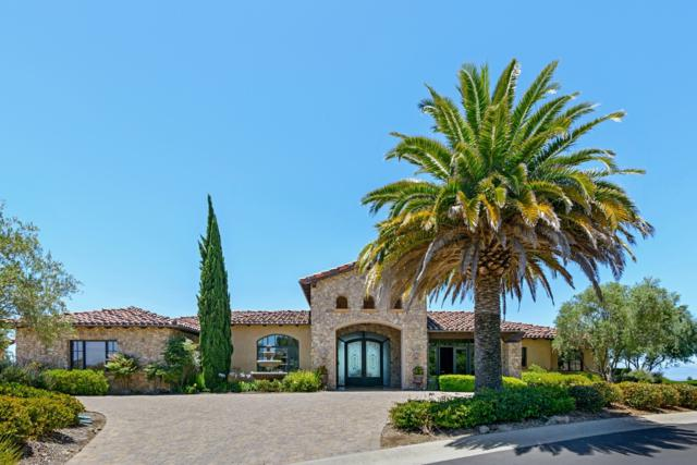 7035 Corintia Street, Carlsbad, CA 92009 (#170032879) :: The Houston Team | Coastal Premier Properties
