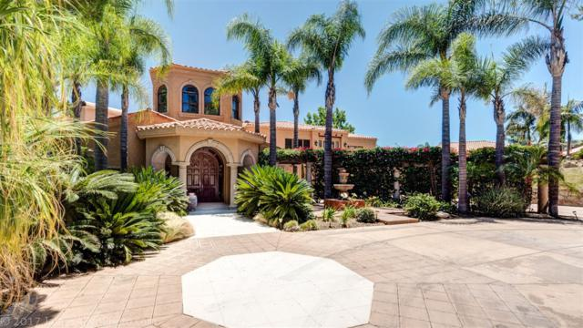 6449 Rainbow Heights Road, Fallbrook, CA 92028 (#170033405) :: Allison James Estates and Homes