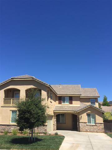 36329 Mustang Spirit Lane, Wildomar, CA 92595 (#170033620) :: Allison James Estates and Homes