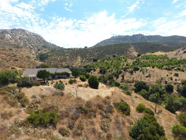 2029 Honey Springs Rd, Jamul, CA 91935 (#170033745) :: Allison James Estates and Homes